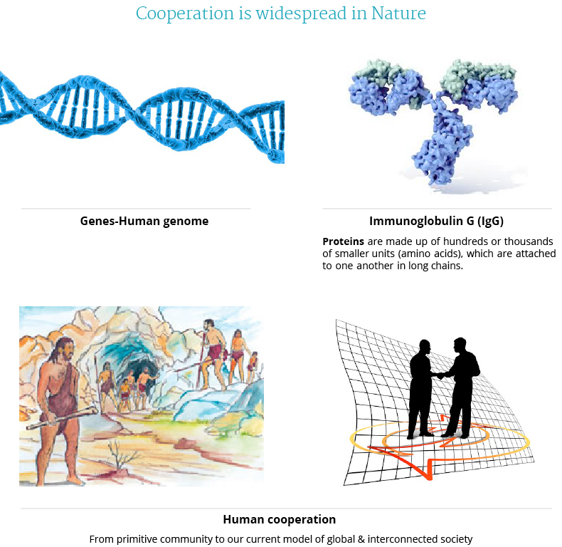 Cooperation at all levels of biological organization